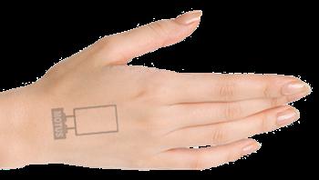entry stamp copy