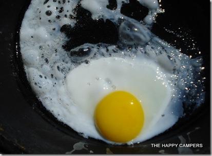 egg 009