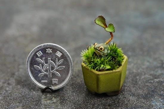 Mini Bonsai Cho-Mini 03