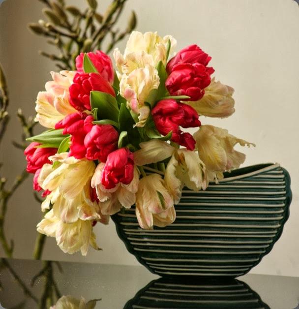 tulips max_f35a43cef92cf8cadf3153f80dda1d6a rebel rebel