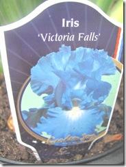 iris blue victoria falls