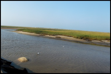 Provincetown 014