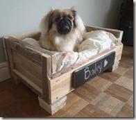 cama para tu mascota