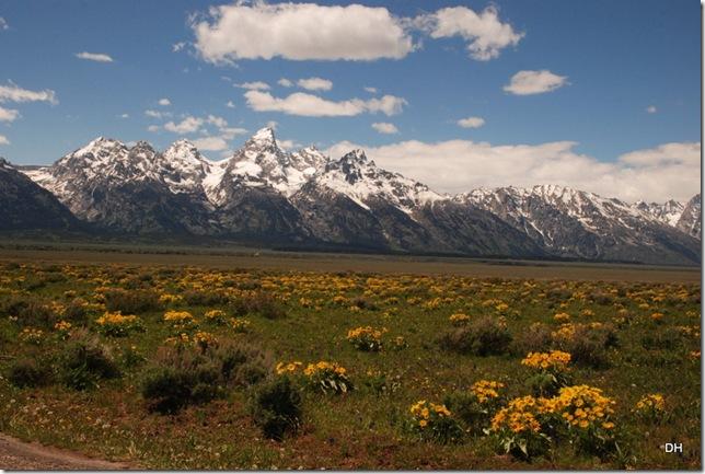 06-04-13 E Tetons Antelope Flats Area (6)