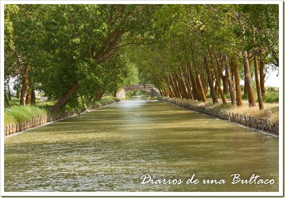 Puente-104