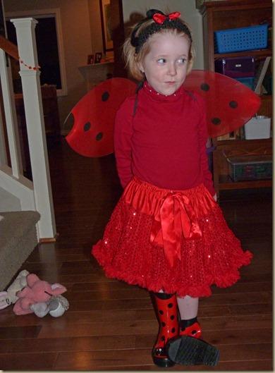 Ladybug Girl Costume 2