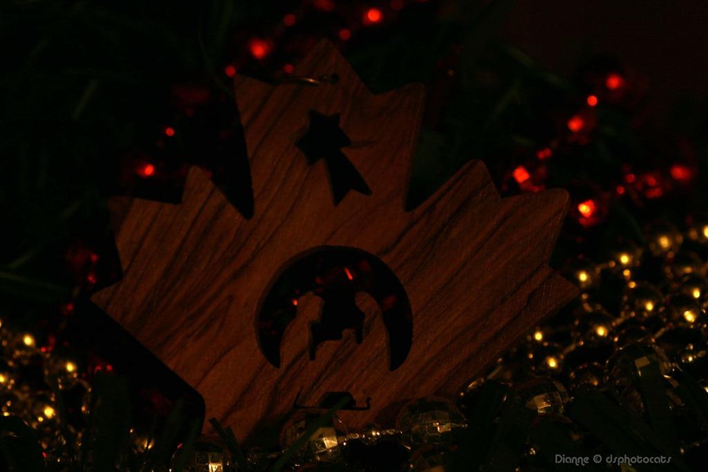[IMG_8173_-The-Nativity3x411.jpg]