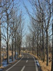2012.2.7-2 オリジナル・初冬のサイクリングロード