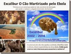 excalibur-o-cao-martirizado-ebola_thumb[1]