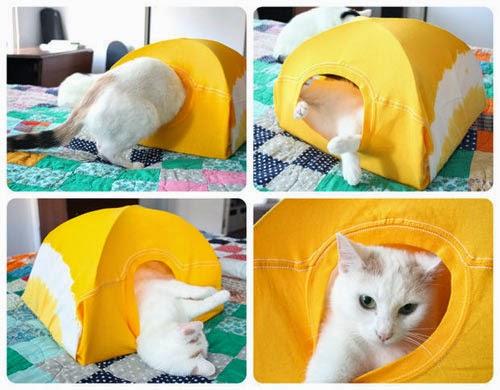 diy-como-fazer-casinha-gato-8.jpg
