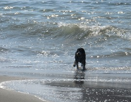 she got her ball before the wave got her