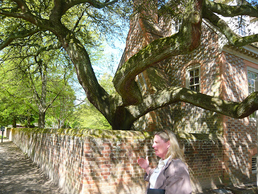 Laura Viancour, our guide and walking encyclopedia for all things historic and horticultural at Colonial Williamsburg, standing under one of the many magnificent trees on the grounds, this being a live oak