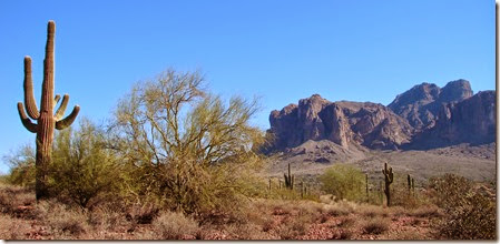 Superstition Mtns. Mesa, AZ 016