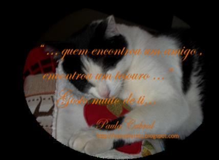 selinho 2_jan_2012