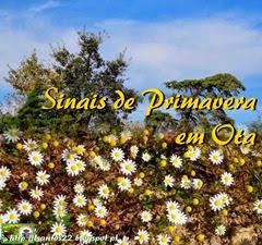 Sinais Primavera - Ota - 13.03.14 (1)