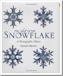 snowflake the art of