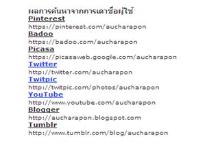 เวบไซต์ค้นหาคนจากโลกออนไลน์