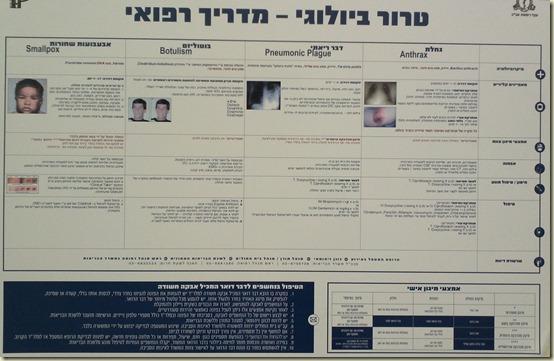 2013-01-06 Raizel Hospital Hadassah 054