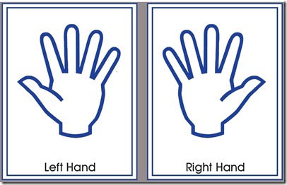 Right - Left Hands