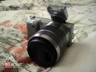 DSC06830-e