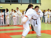 judo-adapte-coupe67-695.JPG