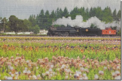 Spokane, Portland & Seattle 4-8-4 #700 passing Schriener's Iris Gardens in Brooks, Oregon in 2005