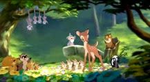 04 les animaux de la forêt