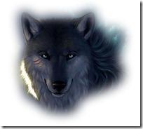 lobos  (6)