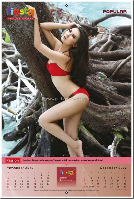 Model Hot di Kalender Fiesta 2012 || gudangcewek.com