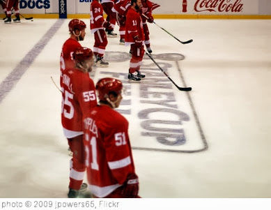 'Wings on the Stanley Cup Finals logo' photo (c) 2009, jpowers65 - license: http://creativecommons.org/licenses/by-nd/2.0/