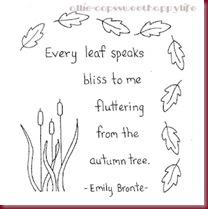 every leaf5