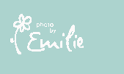 Online_Photography_Workshop_by_Emilie