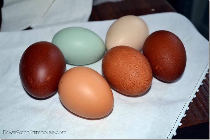 eggsonnapkin