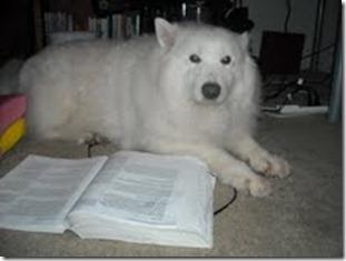 kiki studying