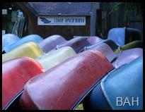 DSCF2210 Canoes  L'ile aux Pies