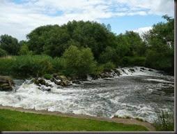 River Avon 2014 029