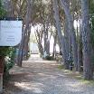 Villa_Celestina_16.jpg