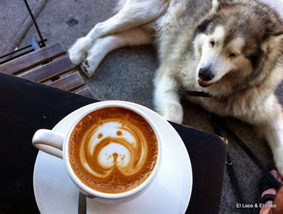 Doggie coffee art (2)