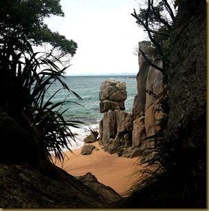 Abel Tasman Beach 2