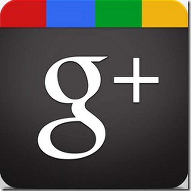 Guida a Google+: Io sul Web