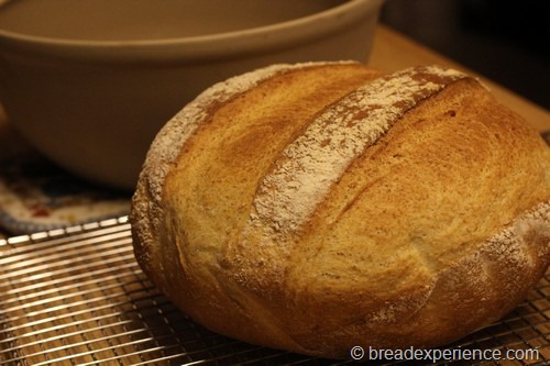 shepherds-bread_0031