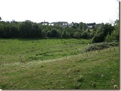 Borgloon: zicht op het stadje vanop de hoogte tussen Kerniel en Borgloon