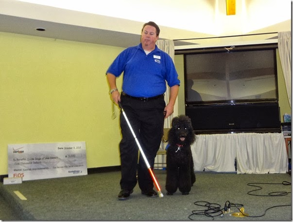 Guide Dogs 033