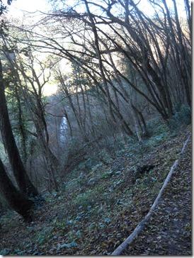 Assisi Volterra 096