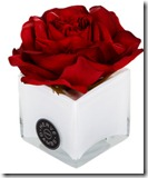 Herve Gambs Red Rose Diffuser