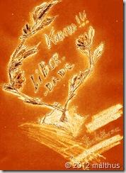 liberdade2012001fire