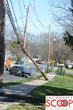 Car Into Pole In Front Of 164 East Eckerson Rd - DSC_0040.JPG
