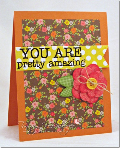 You Are Pretty Amazing by Tammy Hershberger