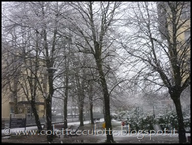 Neve a Padulle - 28 gennaio 2014(6)