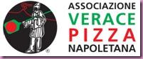 avpn logo